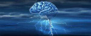 cerveau-1000x400